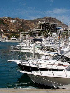 The marina, and its market, is somewhat of an institution in Cabo San Lucas