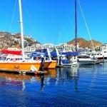 Enjoy Cabo San Lucas, Visit the Marina