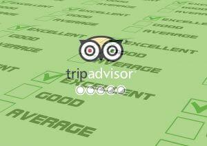 Awards and Reviews on TripAdvisor